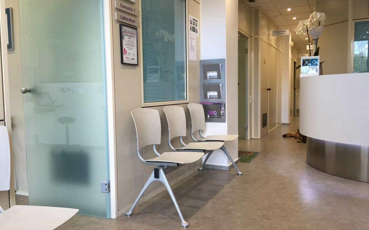 animalia sala de espera